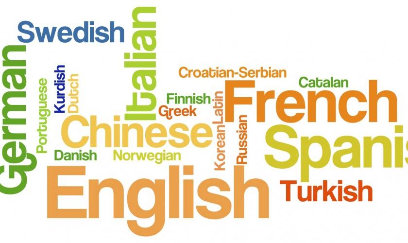 Bookmaker Language