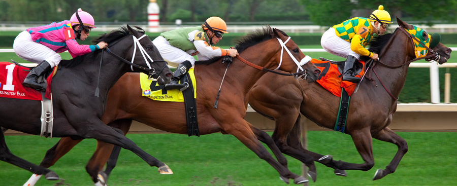 Horse racing betting bet jockey gambling online site gambling on poker